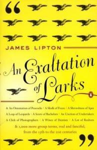 an Exaltation of Larks cover