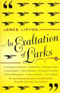 an Exaltation of Larks cover