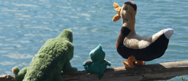 Gator  McBumpypants, Herman and Dee Dee look out over the water