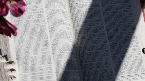 The pages of a dictionary partially in shadow