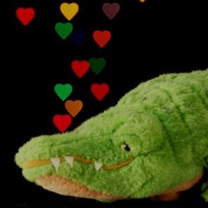 gator loves you