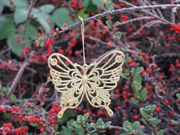 Butterflies for Christmas