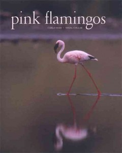 pink flamingos book cover