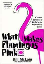 What Makes Flamingos Pink