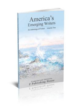 The cover of America's Emerging Writers Volume Two