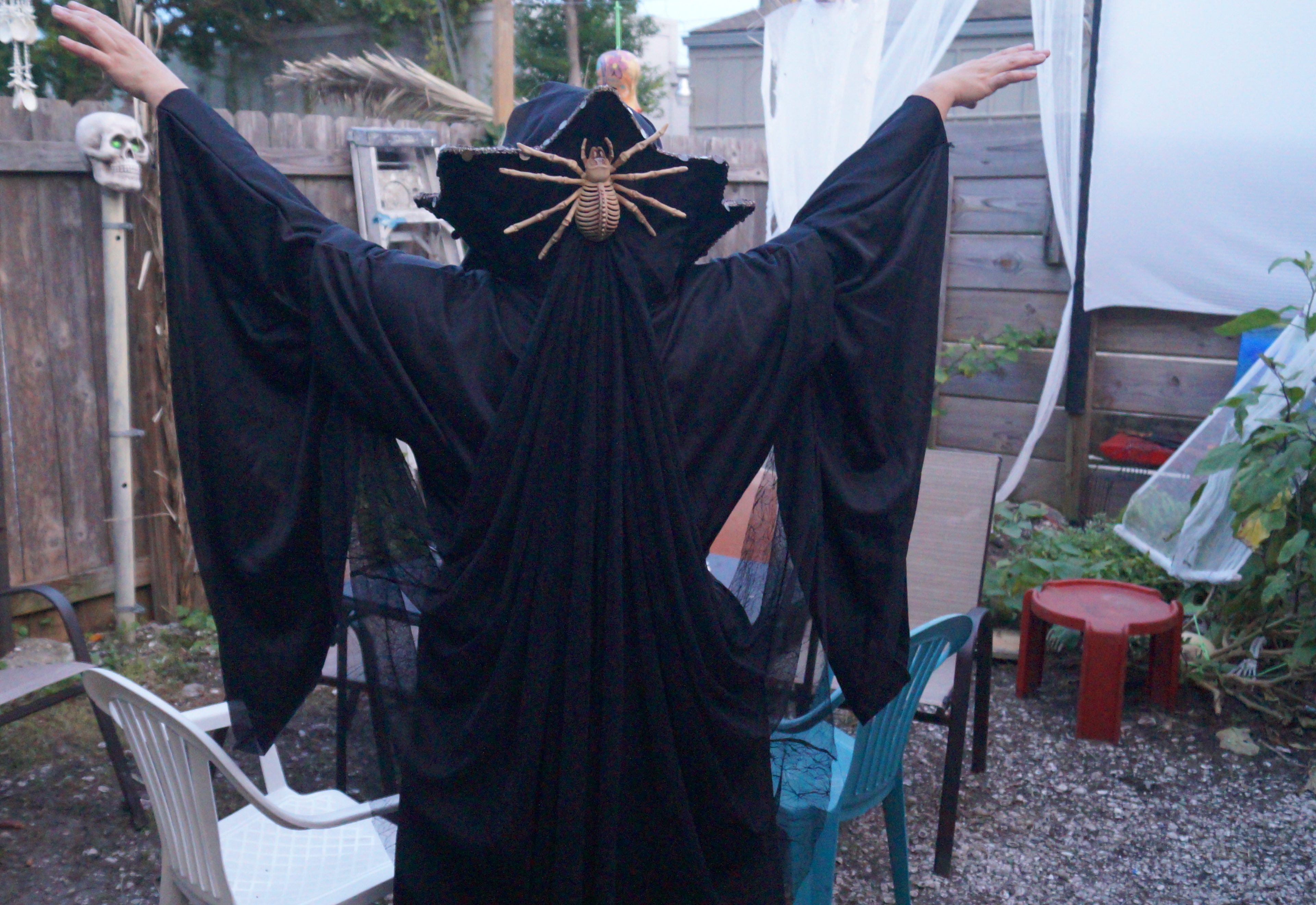 last year's costume.jpg