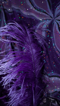 purple sparkle and feather hue corrected