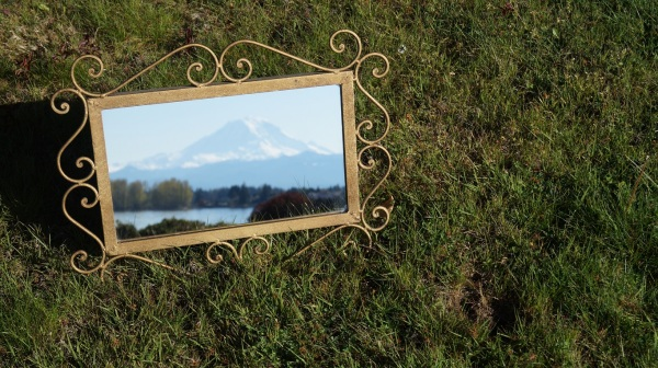 photograph of Mt. Rainier in a mirror on some grass