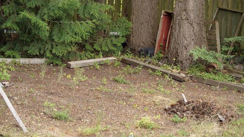 photograph of a raked garden plot