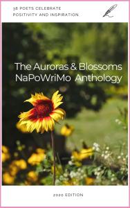 AB-NaPoWriMo-Anthology-2020