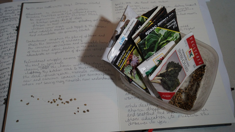 A photograph of seed packets and loose seeds on a poetry notebook.