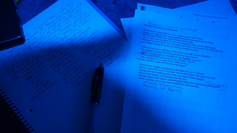 image of notebook and marked-up poem through a blue lens
